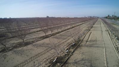 Fresno County Farm For Sale