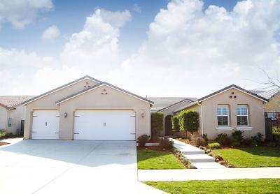 Clovis Single Family Home For Sale: 3932 Serena Avenue