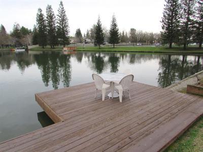 Fresno Single Family Home For Sale: 493 E Shelldrake Circle