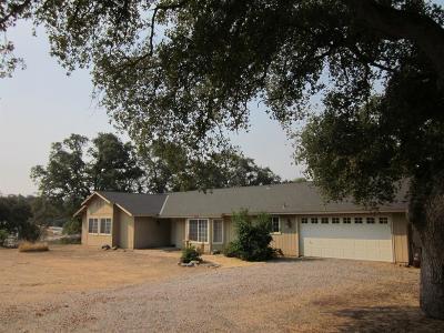 Coarsegold CA Single Family Home For Sale: $365,000