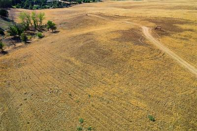 Clovis Residential Lots & Land For Sale: 12623 Auberry Road