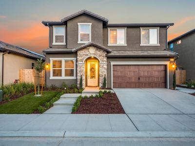 Fresno Single Family Home For Sale: 11814 N Bella Vita Avenue