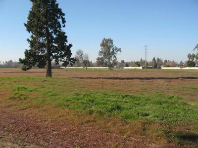 Residential Lots & Land For Sale: 5925 E Tulare Avenue #5913