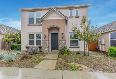 Fresno Single Family Home For Sale: 11345 N Blue Sage Avenue