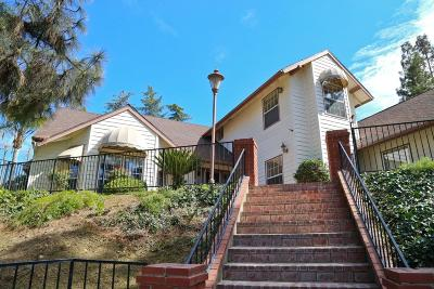 Fresno Single Family Home For Sale: 415 W Bluff Avenue