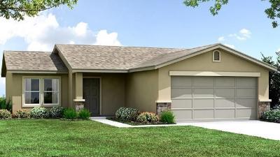 Sanger Single Family Home For Sale: 663 Susan Avenue