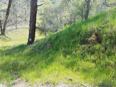 Fresno Residential Lots & Land For Sale: 27680 Sky Harbour Road