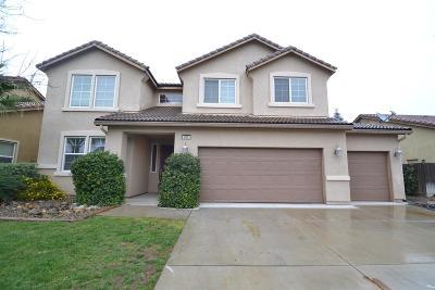 Clovis Single Family Home For Sale: 697 Everglade Avenue