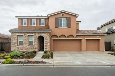 Fresno Single Family Home For Sale: 10638 N Sierra Vista Avenue