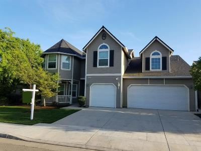 Fresno Single Family Home For Sale: 7061 W San Madele Avenue