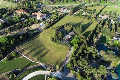 Clovis Single Family Home For Sale: 2798 E Silaxo Road