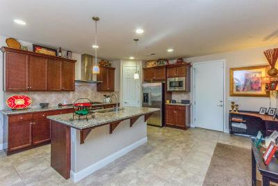 Fresno Single Family Home For Sale: 1634 E Autumn Sage Avenue