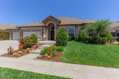Fresno Single Family Home For Sale: 2204 E Royal Dornoch Avenue