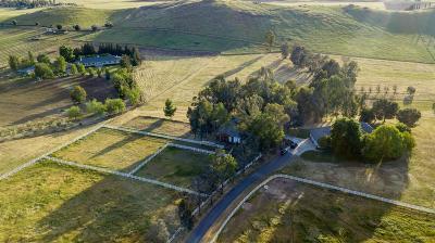 Clovis Single Family Home For Sale: 14503 Academy Oaks Lane
