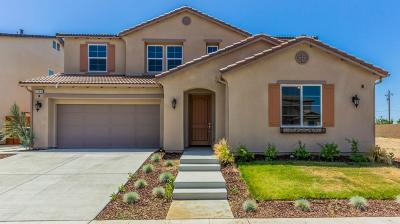 Clovis Single Family Home For Sale: 3480 Portals Avenue