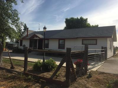Reedley Single Family Home For Sale: 18431 Peter Avenue