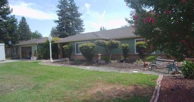 Fresno Single Family Home For Sale: 1297 W Warner Avenue