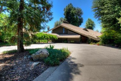 Fresno Single Family Home For Sale: 1280 S Rabe Avenue