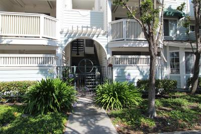 Sunnyvale CA Condo/Townhouse For Sale: $799,876