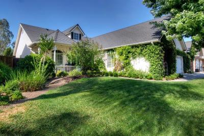 Clovis Single Family Home For Sale: 145 Serena Avenue