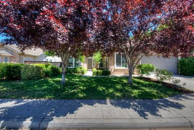 Clovis Single Family Home For Sale: 1919 Megan Avenue