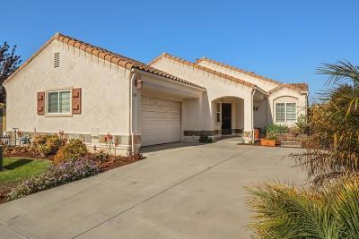 Arroyo Grande Single Family Home For Sale: 467 Bakeman Lane