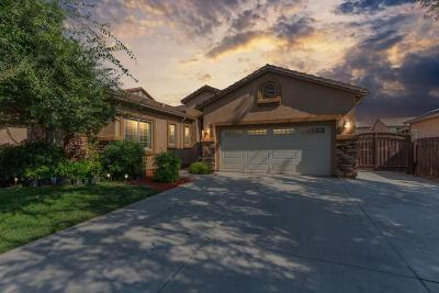Fresno Single Family Home For Sale: 5937 E Christine Avenue