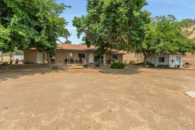 Clovis Single Family Home For Sale: 25067 Auberry Road Road