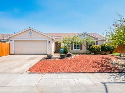 Fresno Single Family Home For Sale: 2489 S Applewood Lane