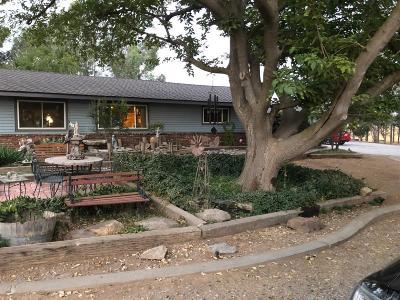 Clovis Single Family Home For Sale: 5002 E Copper Avenue