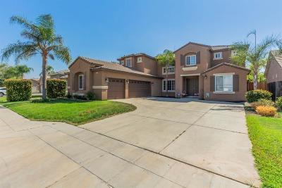 Fresno Single Family Home For Sale: 9571 N Larkspur Avenue