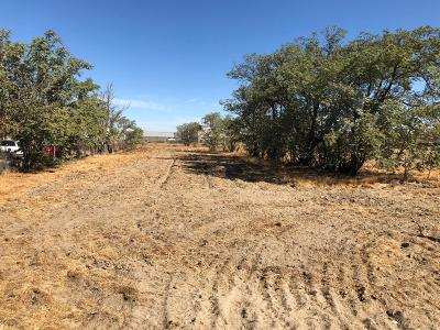 Fresno Residential Lots & Land For Sale: 172 E North Ave