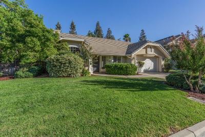 Fresno Single Family Home For Sale: 1295 E Province Drive