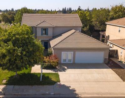 Fresno Single Family Home For Sale: 9119 N Matus Avenue
