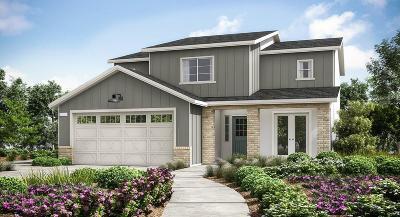 Clovis Single Family Home For Sale: 4085 Alamos Avenue #177