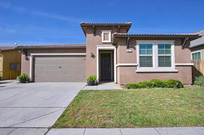 Clovis Single Family Home For Sale: 3441 Flint Avenue
