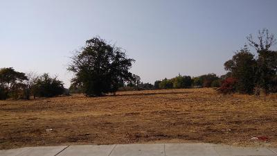 Fresno Residential Lots & Land For Sale: 302 S Peach Avenue