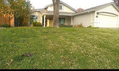 Clovis Single Family Home For Sale: 1554 Hanson Avenue