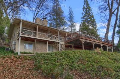 Bass Lake Single Family Home For Sale: 39141 Lake Drive