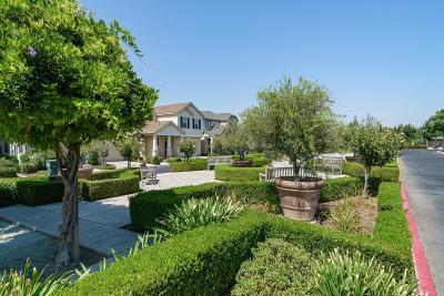 Fresno Single Family Home For Sale: 5621 N Citrus Lane