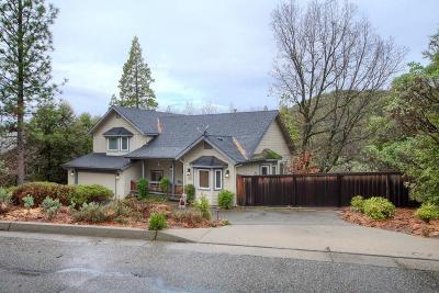 Bass Lake Single Family Home For Sale: 39768 Cedar Vista Circle S