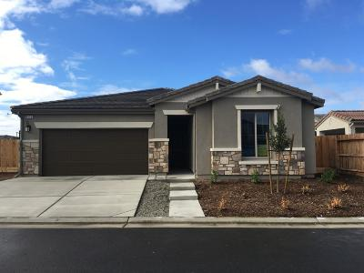 Clovis Single Family Home For Sale: 949 Skylar Lane
