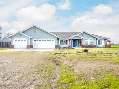 Madera Single Family Home For Sale: 17102 La Canada Road