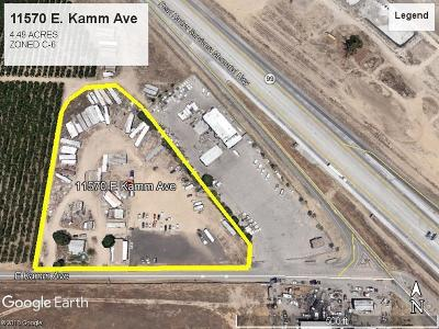 Kingsburg Commercial For Sale: 11570 E Kamm Avenue