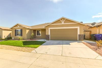 Single Family Home For Sale: 5560 E Burns Avenue