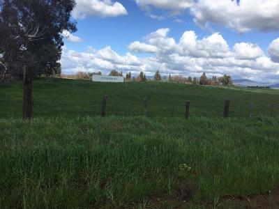 Clovis Residential Lots & Land For Sale: Shaw Avenue