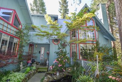 Bass Lake Single Family Home For Sale: 39465 Chickadee