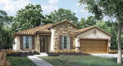 Fresno Single Family Home For Sale: 1008 S De Sante Avenue #100