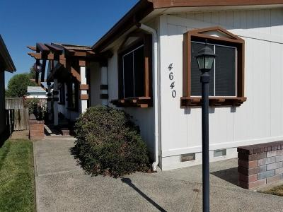 Visalia Single Family Home For Sale: 4640 S Terrace Street