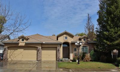 Fresno Single Family Home For Sale: 1072 E Sarazen Avenue